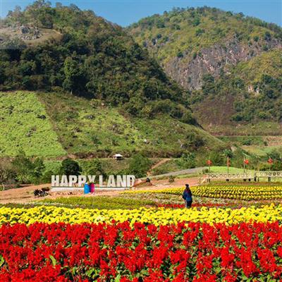 MC02 - Khám phá cao nguyên Mộc Châu - Happy Land