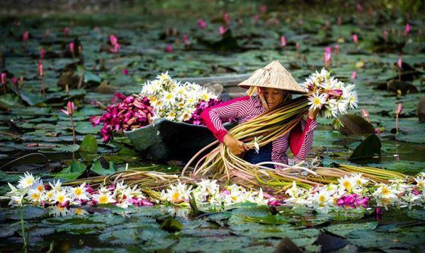NB04 Sài Gòn- Tiền Giang- Côn Đảo- Viếng Mộ Võ Thị Sáu- Cần Thơ- Chợ Nổi- Mỹ Khánh